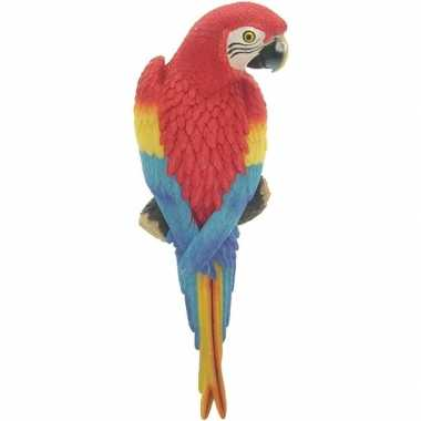 Dierenbeeld rode ara papegaai vogel 31 cm tuinbeeld hangdeco