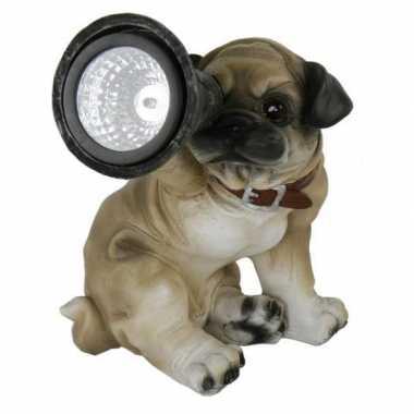 Tuinbeeldje mopshond puppie met solar licht